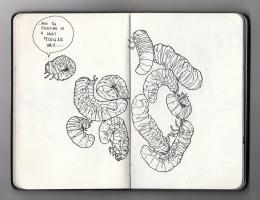Helena Hernandez draw4